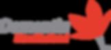 DNZ logo.png