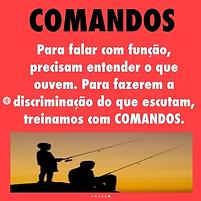Captura_de_Tela_2020-09-09_às_16.26.33