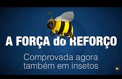 Captura_de_Tela_2020-10-05_às_12.55.23