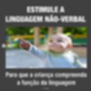Captura_de_Tela_2020-06-18_às_15.55.59.