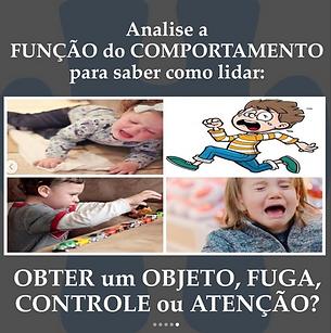 Captura_de_Tela_2020-06-15_às_16.53.11