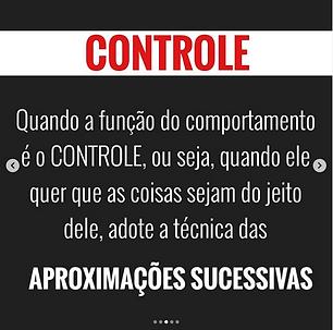 Captura_de_Tela_2020-06-16_às_16.52.47