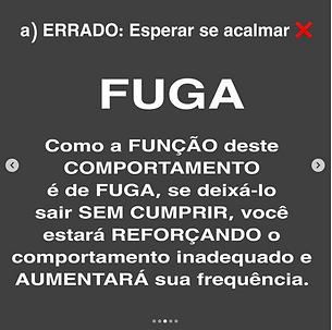 Captura_de_Tela_2020-06-16_às_16.29.43