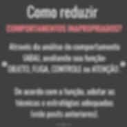 Captura_de_Tela_2020-06-15_às_17.29.08