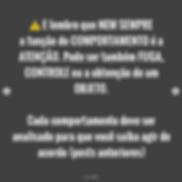 Captura_de_Tela_2020-06-16_às_16.44.44