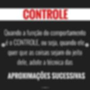 Captura_de_Tela_2020-06-15_às_18.26.37
