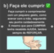 Captura_de_Tela_2020-06-16_às_16.29.36