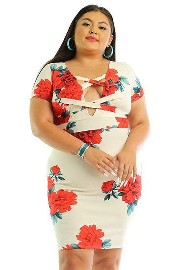 Rose Printed Plus Size Dress