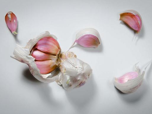 A quick and easy recipe for prebiotic Garlic Alioli