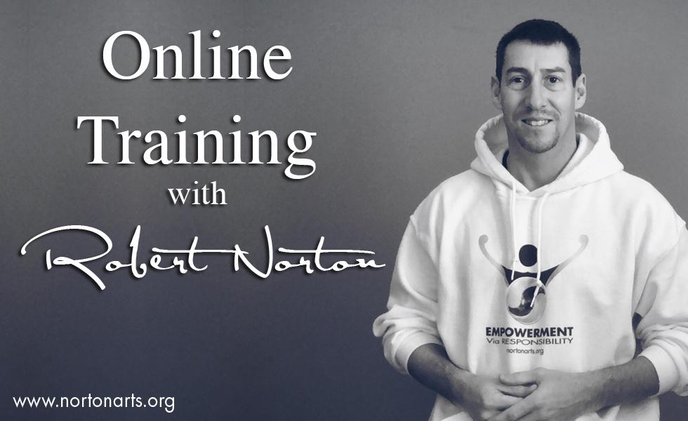 NortonArts_OnlineTraining_2