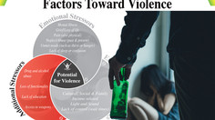Violence: A fine line between excuses and stressors
