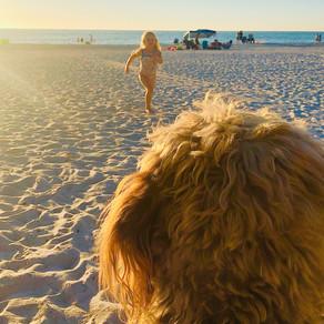 Be a Kid at the Beach