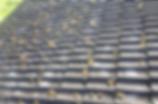 Swiss Gommage - Agim Jusufi - Traitement de la toiture, mousses et lichens, démoussage