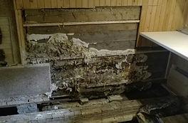 Swiss Gommage - Agim Jusufi - Mérule, caves et sous-sols, parois en bois, murs