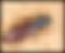 Swiss Gommage - Agim Jusufi - Lyctus Traitement du bois Chalet et charpente