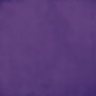 紫01_500x_edited.png