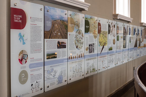 timeline from start display wall.jpg