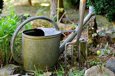 watering-can-3630281_640.jpg
