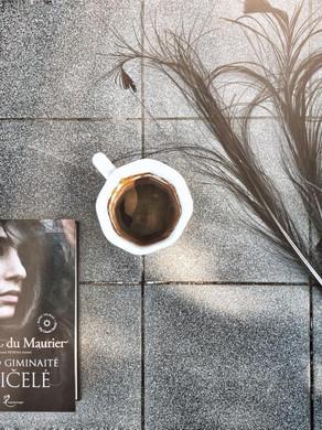 Daphne du Maurier - Mano giminaitė Reičelė