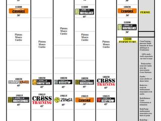 Planning allégé du 17/7 au 31/7