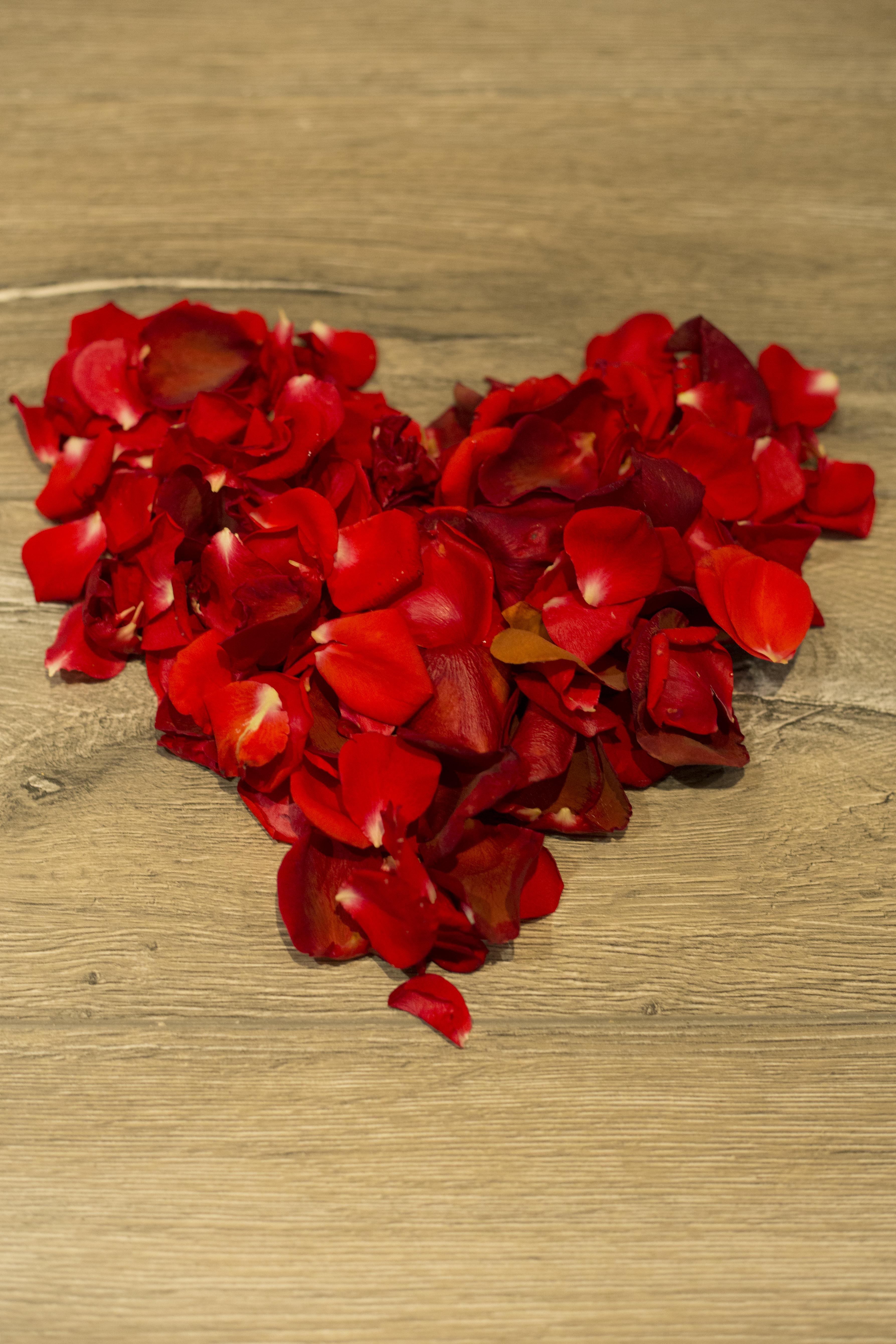 Rose petal heart blank XXL