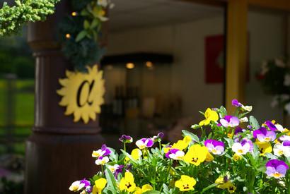 Der Eingangsbereich des Hotel Alfa Soleil in Kandersteg im Berner Oberland