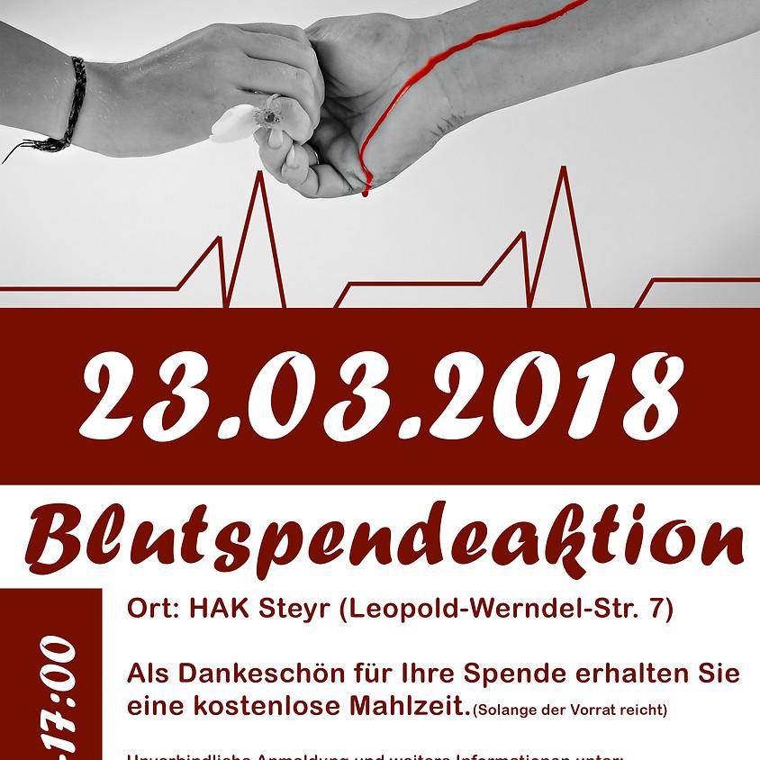 Blutspendeaktion Steyr1