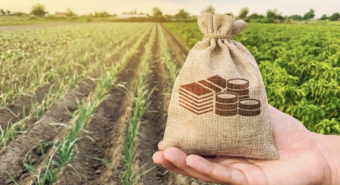 Wide Open Agriculture - sales surge as customers seek healthy, ethical food