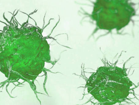 Immutep Limited - a global leader in development of immunotherapy for cancer & autoimmune diseases