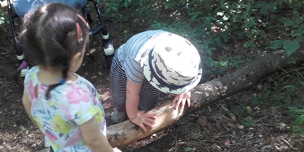 Waldläuferbande Wildnisabenteuer für die Kleinen U 4