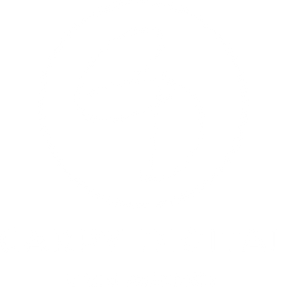 logo carpy digital