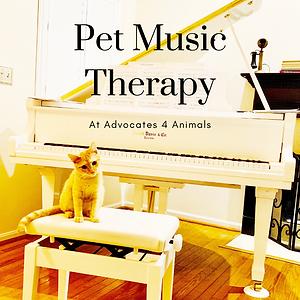 PetMusicTherapyatA4A_boxforwebsite.png