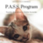pass.png