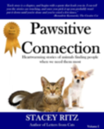 PawsitiveConnectionFrontCoverKindle.JPG