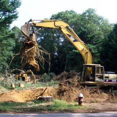 Land & tree clearing 2