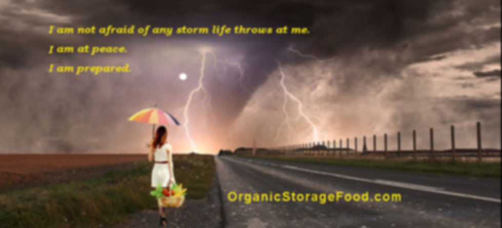 A woman with an unbrella and a basket of food looks across a field at an approaching storm.