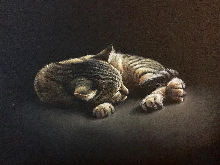 """""""Le sommeil d'Argos""""1"""