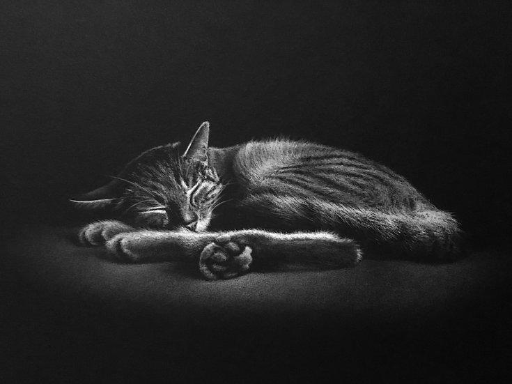 """""""Le sommeil d'Argos""""NB 2"""