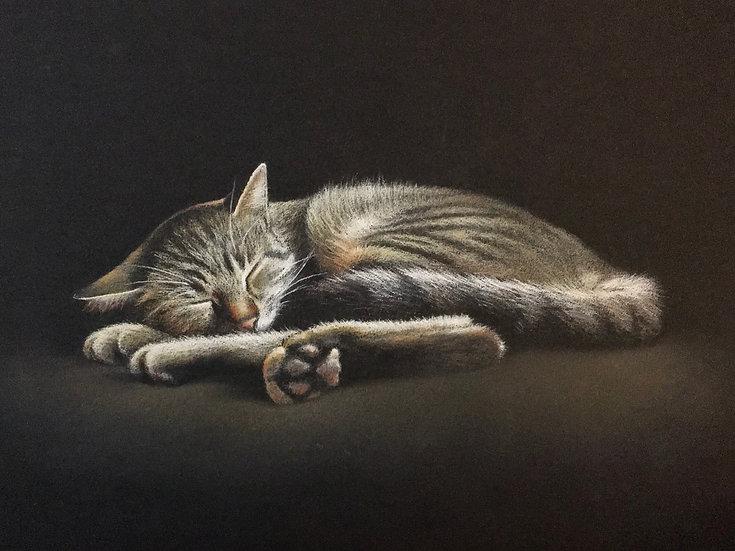 """""""Le sommeil d'Argos""""2"""