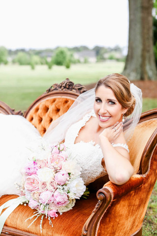Aster Blooms Photography