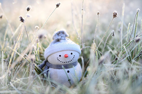 snowman-4674856_1920.jpg