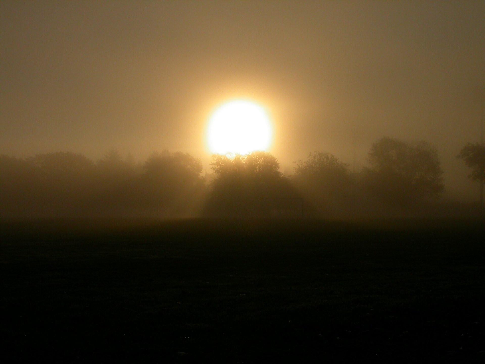 sunrisegreatpark5992.jpg