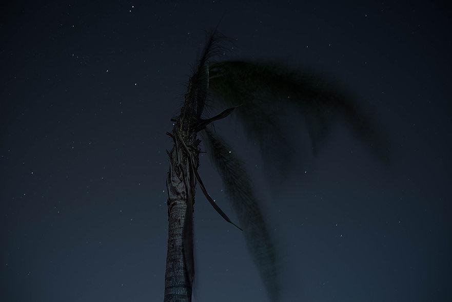 02-Nocturno Serie de 5, 2016 85 x 126 cm