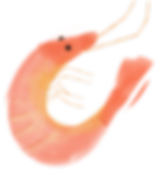 AFM Shrimp.png