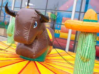 Bull RidingZ