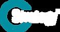 GI_7A Strategy Logo_Reverse_v11.19.png
