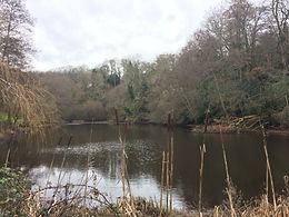 Walk 1 Powers pond.JPG