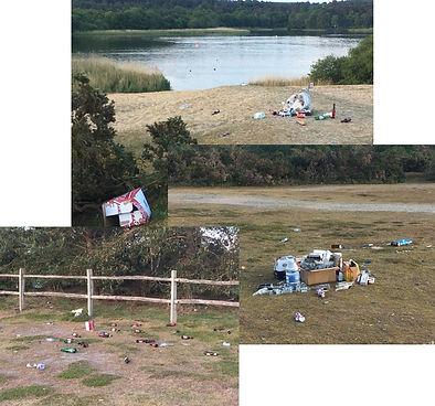 Litter at Frensham Great Pond.jpg