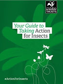 Action for Insects.jpg