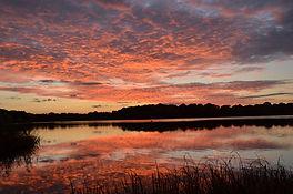 Walk 7 Frensham Pond at Sunset